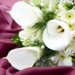 flowers 6th anniversary gifts calla lillies